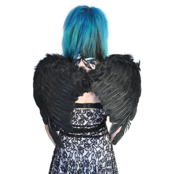 Halloween Small Feather Wings Fancy Dress (Black)