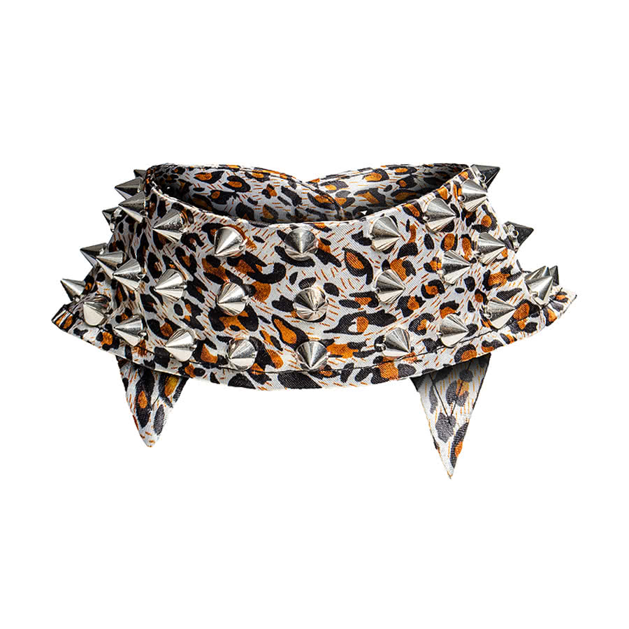 Blue Banana Studded Leopard Collar