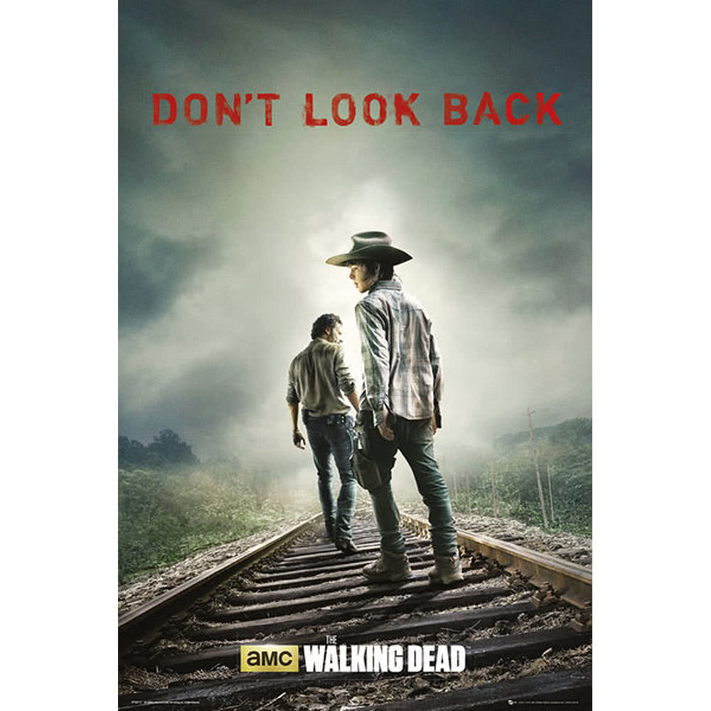 The Walking Dead Don't Look Back Poster