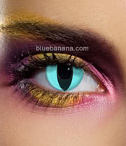 Edit Cat 90 Day Coloured Contact Lenses (Aqua) Pair