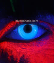 Edit I Glow UV 90 Day Coloured Contact Lenses (Blue) Pair