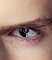 EDIT 1 Year Terminator Skynet Coloured Contact Lenses (Black/Silver)