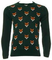 Run & Fly Foxes Faces Jumper (Green)